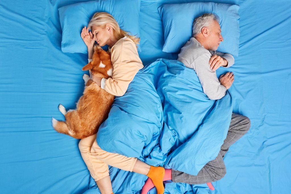 Schlafen mit Hund