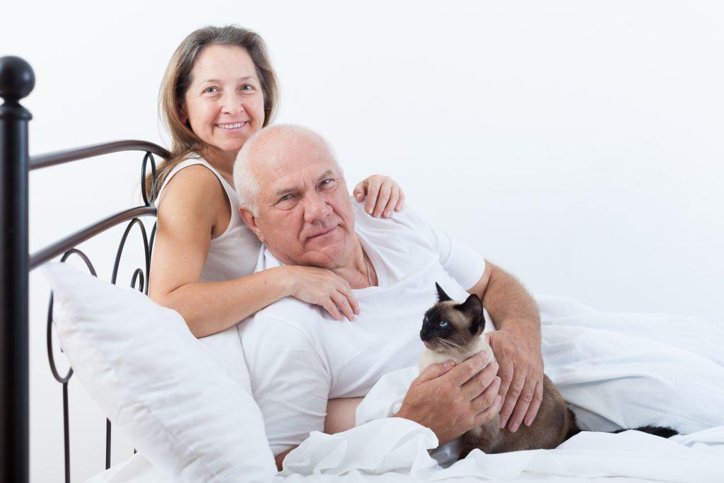 Paar im Bett im Katze